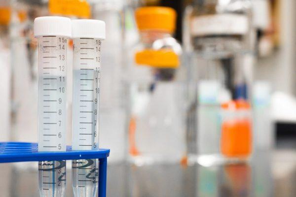 employee drug tests