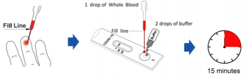 wholeblood fingerstick covid testing