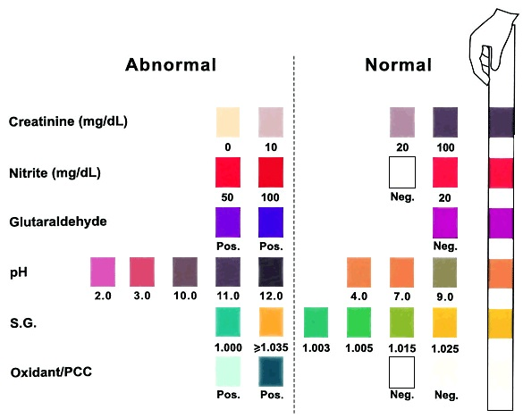 iScreen Adulteration Test Strips Color Chart